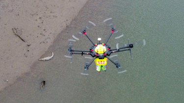 The Wetpac Little Ripper drone, which incorporates croc-spotting technology, in action above the Mowbray River.